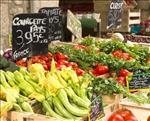 Inspiration til oplevelser og aktiviteter i Provence/Côte d'Azur